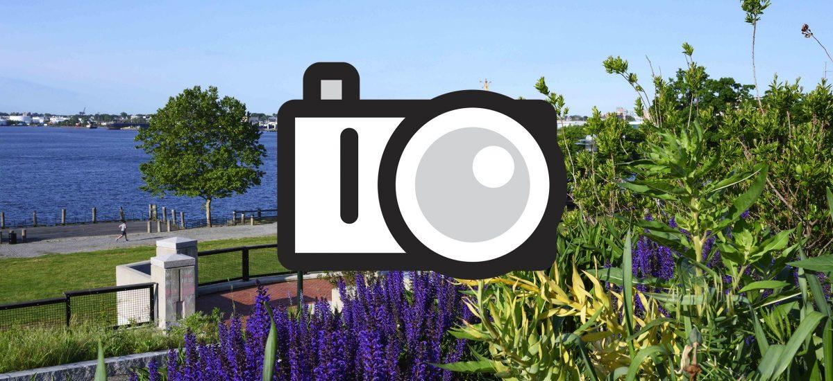 Photo Contest & Exhibition
