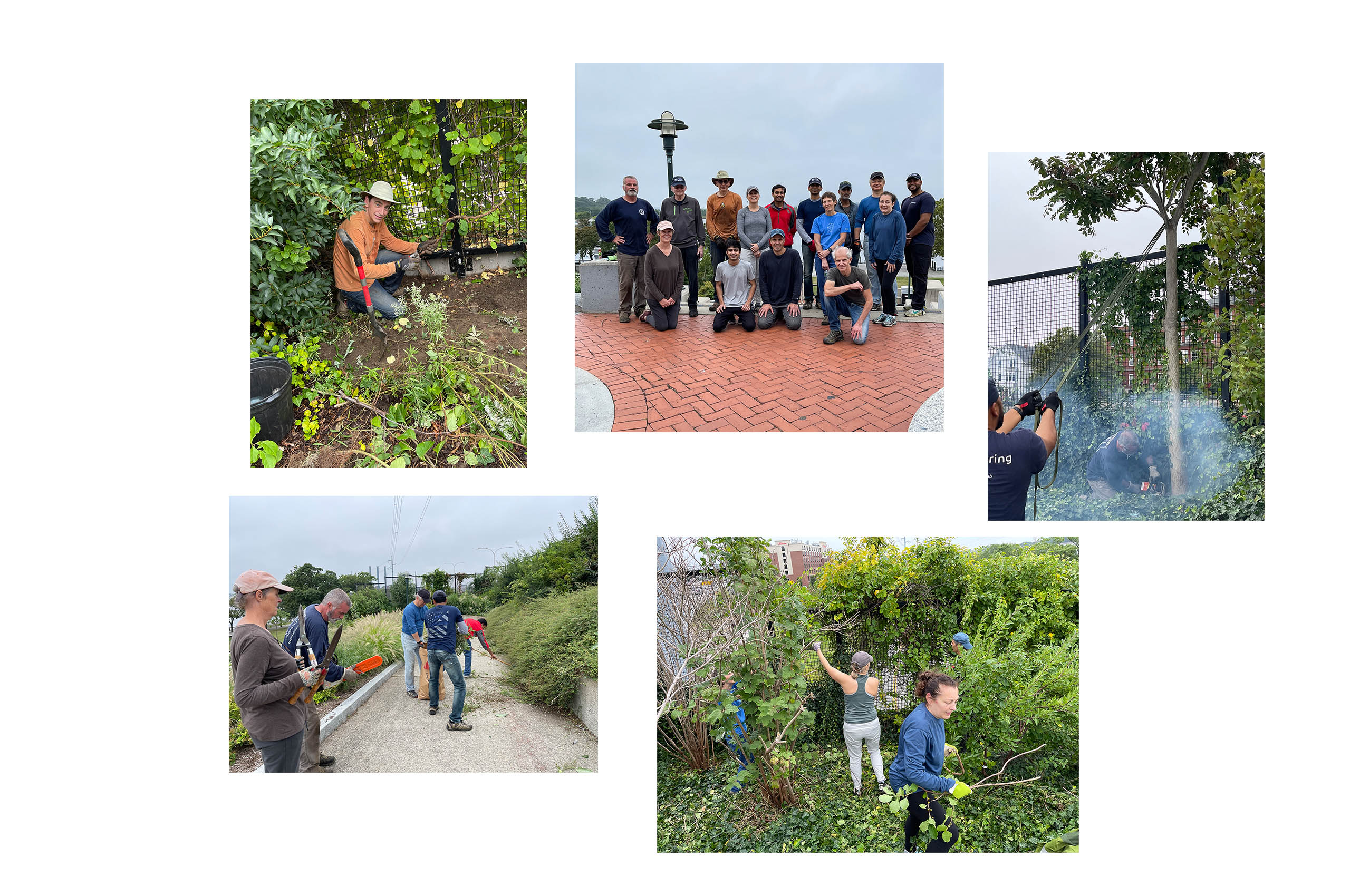 Dassault Systemes Day of Service